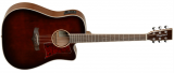 Tanglewood WINTERLEAF Dreadnought TW5 Whiskey Barrel Western med pickup