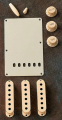 Fender Accessory Kit Strat Aged White